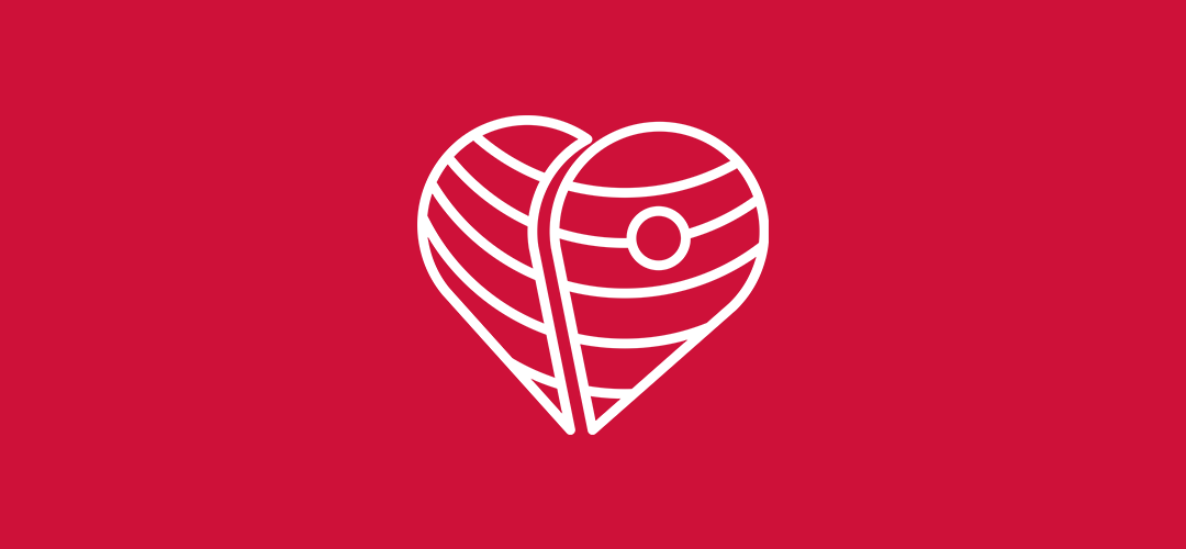 CareAbroad heart